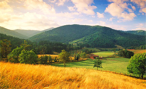 The Pastoral Setting Of Claxton Farm Will Leave Your Guests Astonished With Its Natural Beauty This 500 Acre Working Just 14 Miles North Asheville